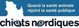 Chiots Nordiques